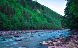 Opinião surpreendente da natureza em Ucrânia Imagem de Stock Royalty Free