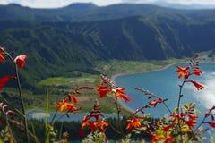Opinião surpreendente da paisagem do lago do vulcão da cratera na ilha Açores Portugal de Miguel do Sao com flores foto de stock