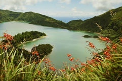 Opinião surpreendente da paisagem do lago e das flores do vulcão da cratera no isla de Miguel do Sao de Açores foto de stock