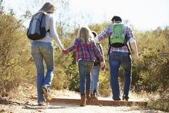 Opinião traseira a família que caminha no campo Imagens de Stock
