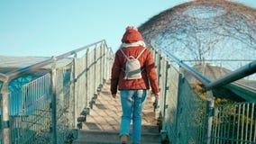 A opinião traseira a jovem mulher está andando em cima no parque em Sunny Springtime Day vídeos de arquivo