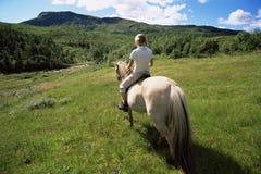 Opinião traseira o cavalo de equitação da mulher nova Imagens de Stock