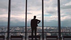 Opinião traseira o homem de negócios em um escritório com opinião panorâmico da cidade O homem de negócios admira a cidade de Win Fotos de Stock