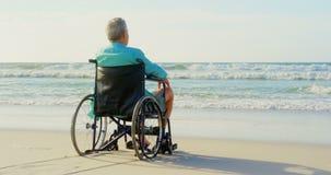 Opinião traseira o homem superior deficiente que olha a vista na praia 4k video estoque