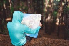 Opinião traseira o viajante no hoodie azul que guarda o mapa ao descansar na floresta do pinho imagens de stock royalty free