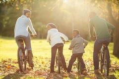 Opinião traseira uma família nova que faz um passeio da bicicleta fotos de stock