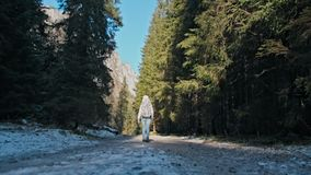 Opinião traseira uma jovem senhora Walking na estrada bonita em Forest Slow Motion vídeos de arquivo
