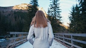 Opinião traseira uma senhora Walking na estrada e na ponte com neve em uma floresta das montanhas video estoque