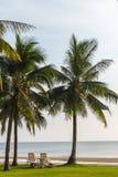 Opinião tropical da praia com as espreguiçadeiras no campo de grama Fotos de Stock
