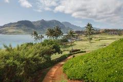 Opinião tropical do recurso em Lihue, Kauai imagem de stock royalty free