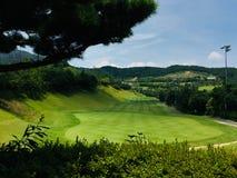 opinião verde do golfe imagens de stock