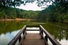 Opinião verde do lago da floresta do cais de madeira Puglia, Itália Fotos de Stock