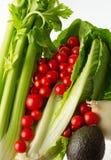 Opinión 1 de verduras frescas Imágenes de archivo libres de regalías