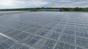 Opinión aérea agrícola industrial de los invernaderos 4k Área moderna del invernadero de la plantación desde arriba 4K metrajes