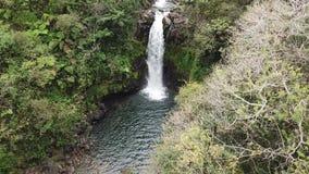 Opinión aérea de Hawaii de la cascada almacen de video