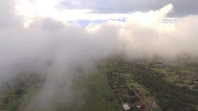 opinión aérea de la cámara del abejón 4k sobre las nubes de lluvia blancas mullidas en cielo azul claro sobre horizonte verde del almacen de video