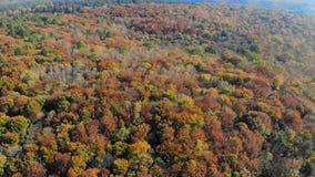 Opinión aérea de la cantidad Vuelo sobre las montañas del otoño con los bosques, los prados y las colinas en luz suave de la pues almacen de metraje de vídeo