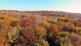 Opinión aérea de la cantidad Vuelo sobre las montañas del otoño con los bosques, los prados y las colinas en luz suave de la pues metrajes