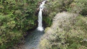 Opinión aérea de la cascada de Hawaii almacen de video