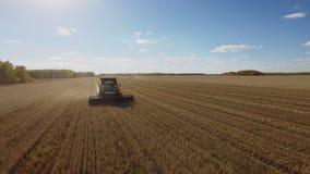 Opini?n a?rea de la cosecha hermosa con la cosechadora de la m?quina segador en campo de trigo almacen de video