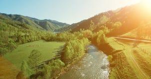 Opinión aérea de UHD 4K Vuelo bajo sobre el río, el prado y el camino fríos frescos de la montaña en la mañana soleada del verano almacen de metraje de vídeo
