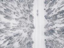 Opinión aérea del abejón del bosque y del camino del invierno cubiertos con nieve Foto de archivo