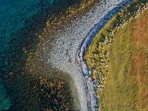 Opinión aérea del abejón de la costa costa de la naturaleza con la manada de cabras Imagen de archivo libre de regalías