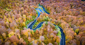 Opinión aérea del abejón de una carretera con curvas curvada a través del bosque Fotografía de archivo libre de regalías