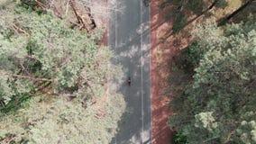 Opini?n a?rea del abej?n la mujer cauc?sica joven juguetona que monta su bici a trav?s del parque verde de la ciudad Concepto de  almacen de video
