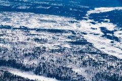 Opinión aérea del bosque del invierno con nevado Foto de archivo