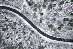 Opinión aérea del invierno del camino en bosque Imagenes de archivo