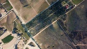 Opinión aérea el Cava de Marcelo, bodegas de Santo Tomas, granja de Ojos NegrosSantos del viñedo almacen de video