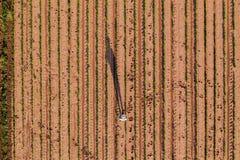 Opinión aérea el granjero en campo de la soja fotos de archivo