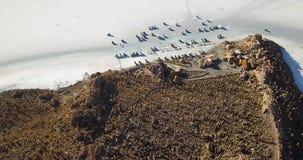 Opinión aérea Isla Incahuasi, la isla del cactus en el lago de sal de Salar de Uyuni, Bolivia metrajes
