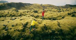 Opinión aérea la mujer dos que camina, caminando en el campo de lava en Islandia Los turistas se caen abajo en el musgo suave almacen de video