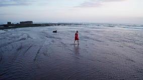Opinión aérea la mujer en la playa en la puesta del sol hermosa almacen de video