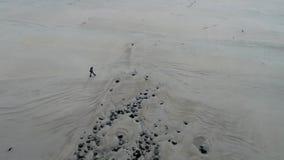 Opinión aérea la señora que camina en el playa famosa de Magheraroarty - Machaire Rabhartaigh - en la manera atlántica salvaje ad almacen de metraje de vídeo