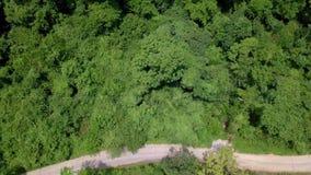 Opinión aérea los turistas que montan en Zipline o cuerda del toldo Aventura de la adrenalina el vacaciones metrajes