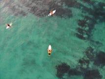 Opinión aérea personas que practica surf en su tablero que espera las ondas durante puesta del sol imagen de archivo