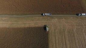 Opinión aérea sobre campos agrícolas enormes, camión del abejón en el tiempo de la cosecha almacen de metraje de vídeo
