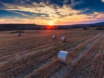 Opinión aérea sobre el campo de trigo Foto de archivo