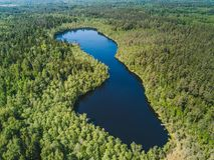 Opinión aérea sobre el pequeño lago Imagen de archivo libre de regalías