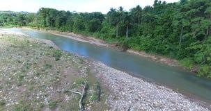 Opinión aérea sobre el río hermoso de la montaña con las palmas a lo largo de los bordes 4K almacen de video