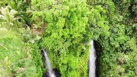 Opinión aérea sobre la cascada asombrosa en la isla tropical en Bali Cámara lenta 1920x1080 metrajes