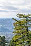 Opinión aérea sobre las montañas y los bosques en Serbia Fotografía de archivo