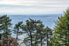 Opinión aérea sobre las montañas y los bosques en Serbia Fotos de archivo libres de regalías