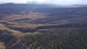 Opinión aérea sobre pico de montañas, la trayectoria natural, la montaña con los árboles y las plantas, vegetación, cielo con el  almacen de metraje de vídeo