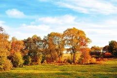 Opinión al aire libre del otoño de la puesta del sol del parque del otoño en tiempo agradable Parque del paisaje-otoño de la natu Imagenes de archivo