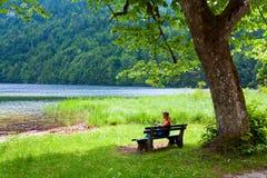 Opinión alpestre del lago del verano fotografía de archivo