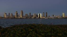 Opinión amplia pintoresca San Diego Skyline en la oscuridad del parque centenario en la isla de Coronado almacen de metraje de vídeo